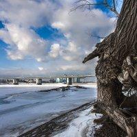 Барнаул. Мост через Обь. :: Александр Скалозубов
