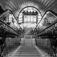 stairs :: Dmitry Ozersky