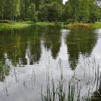Москва. Ботанический сад РАН. (Другое прочтение) :: kolin marsh
