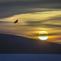 над озером Исеть :: Pavel Kravchenko