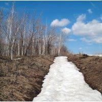 Ещё лежат остатки снега.. :: Андрей Заломленков