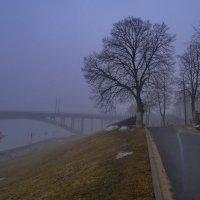 Туман :: Alexandr Яковлев