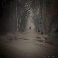 Когда-нибудь мы выйдем из этого тумана... :: Сергей и Ирина