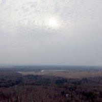 Апрель в Подмосковье. :: Олег Чернов