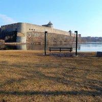 Ивангородская крепость :: linnud