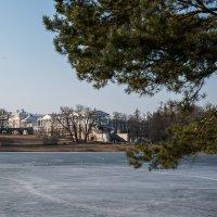 Весна. Царское село :: Андрей Илларионов