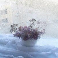 Весна рано или поздно возвращается :: Инна