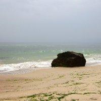 На море спустился туман... :: Людмила