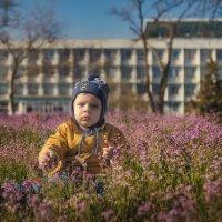 Весна......... :: Дмитрий Макаров