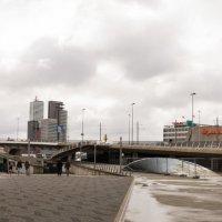 Панорама .Река Маас, Роттердам. Мост Эразма :: Witalij Loewin