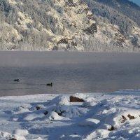 Зимние берега :: Татьяна Соловьева