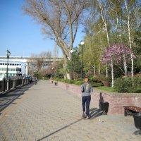 Набережная, пробежка апрельским воскресным утром :: Леонид