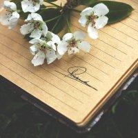 весна :: Diana Bunina