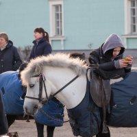Пони :: Любовь Бутакова