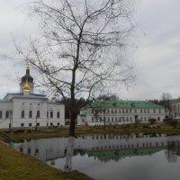 Спасо-Елеазаровский монастырь :: BoxerMak Mak