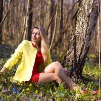 Весеннее настроение!! :: Elena Vershinina