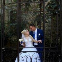 Жених и невеста в беседке :: Александр Цисарь