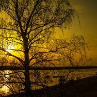 Апрельский закат. :: Валерий Гудков