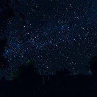 звёзды над Бали чб :: Александр
