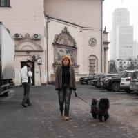 Дама с собачкой :: Александр Кузьмин