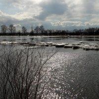 Момент ледохода. :: nadyasilyuk Вознюк