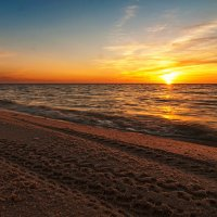 следы на песке :: Vitalij P