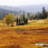 Приют в горах :: Сергей Чиняев