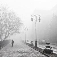 Утренние прогулки :: Фёдор Куракин