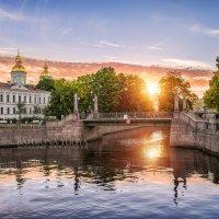Доброе утро, солнышко! :: Юлия Батурина