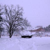 Снег. :: Береславская Елена