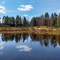 Отражаясь в зеркале весны... :: Лесо-Вед (Баранов)