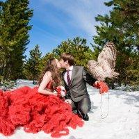 свадьба с совушкой :: Екатерина Кузьмина