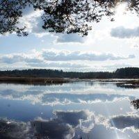 Оредеж таинственно-зеркальный в глубине своих бездонных вод :: Елена Павлова (Смолова)
