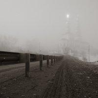 Сквозь туман... :: Sergey Apinis