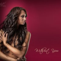 Without You :: Vitaly Shokhan