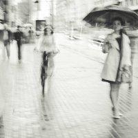 Размытые дождём :: Anyula Photo