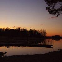 вечерние контрасты :: liudmila drake