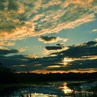 Как жаль, что мы не видим красоту... :: Александр Бойко