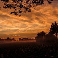 Сегодняшний рассвет в нашем колхозе. :: Elena Spezia