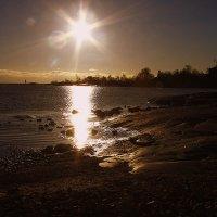 Холодное солнце Хельсинки :: M Marikfoto