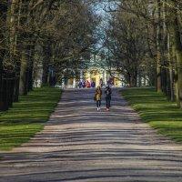 Вдоль тенистой аллеи парка :: Елена Пономарева