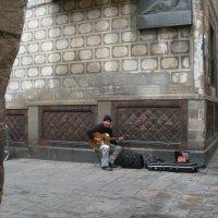 Уличный музыкант :: Виталий  Селиванов
