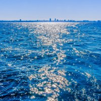 Утро на море :: сергей cередовой