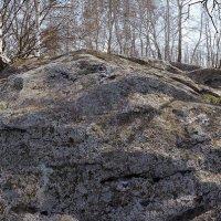 Камни :: Женя Лузгин
