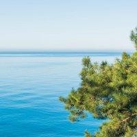Черное море :: Олег