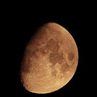 10-й лунный день :: Дмитрий Боргер