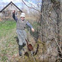 Измерили глубину старинного колодца... :: Владимир Павлов