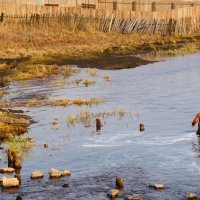 Первая рыбалка :: Светлана Игнатьева