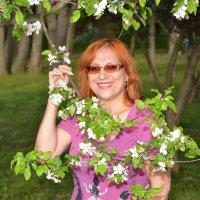 про весну и девушек 2 :: донченко александр