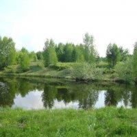 Озеро :: Надежда Малинкина